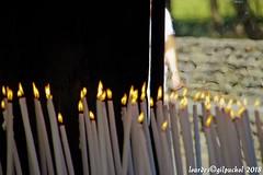 Lourdes 160-A (José María Gil Puchol) Tags: aquitaine basilique boujie catholique cathédrale cierge eau eaumiraculeuse fidèle france handicapé jeanpaulii josémariagilpuchol lourdes paysbasque prière pélèrinage religion