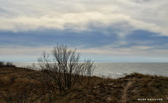 Evening Clouds over the Dunes (mswan777) Tags: dune scenic evening cloud nature outdoor lake michigan stevensville seascape shore coast silhouette nikon d5100 nikkor 1855mm sand