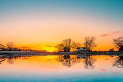 Puddle Reflection (ashercurri) Tags: sunset reflection house south north carolina louisberg puddle