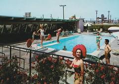 Americana Motel Anaheim (hmdavid) Tags: motel vintage postcard americana anaheim california disneyland midcentury modern roadside architecture 1950s 1960s swimming pool girlie