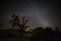 Orion Mojave (SubOrbitalBen) Tags: rokinon samyang24mm milkyway astrophotography mojave rokinon24mm nikond750 nikon orion ioptron skyguiderpro