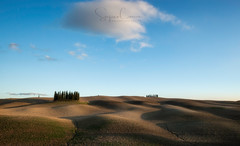 Nothing but cypresses (Stephen Hunt61) Tags: hills nature trees cypresses curves landscape landscapes landmark land clouds italy tuscany valdorcia outdoor stefanocaccia paesaggio toscana italia countryside