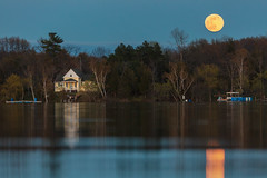 Moonrise Over Cottage (Duncan Rawlinson - Duncan.co) Tags: 1000islands 1eaqwcmdimhfwpsakdbezurc3ie2u56rfb 5dsr architecture canada canon canoneos5dsr cottage duncanrawlinson duncanrawlinsonphoto duncanrawlinsonphotography duncanco landscape ontario photobyduncanrawlinson shotwithcanoneos5dsr summer20171000islandsontariocanada thousandislands blue building cottagelife countryside dark dusk exterior home house httpsduncanco httpsduncancomoonriseovercottage httpsblockchaininfotxb5cb09b4370b94d42c0f8fa874c48f58b07d1e6f5d1f424f719ef1a7b07684ab moon night outdoor rural scene tree trees tothemoon bitcoin
