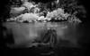 SUEÑOS (.KiLTRo.) Tags: panguipulli regióndelosríos chile cl kiltro agua río river water longexposure exposure nature naturaleza trees árboles forest bosque neltume