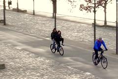 Much more dangerous but so funnier than biking on a tandem (dmnq_fenot) Tags: cof017step cof017cg 7dwf quai rhône lyon people movement