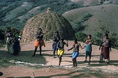 Zulu girls dancing, 1975 (NettyA) Tags: 1975 35mm africa kodachrome konicat3 southafrica zulu zululand clothing dancing people scannedslide slidefilm traditional valleyof1000hills zulukraal women
