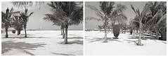 ras al khaimah 48 (beauty of all things) Tags: vae uae rasalkhaimah beach strand diptych bw sw