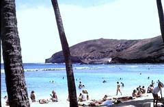 Hanauma Bay Nature Preserve (moacirdsp) Tags: hanauma bay nature preserve east honolulu hawaii kai county o'ahu hawaiʻi usa 1978