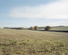 Intermission ([Photom]) Tags: 120 6x7 england format hampshire hintonampner mamiya7ii places uk film landscape mediumformat rural