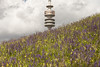 Olyturm Munich XI (erdquadrat) Tags: olympiapark olyturm münchen munich olympia74 olympiaturm tower funkturm radio mast bayern bavaria architecture urban view look spring frühling wiese flower