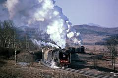 V700_4_178 (Bingley Hall) Tags: transport train transportation trainspotting rail railway railroad locomotive engine china asia nancha qj steam 1983 freight 2102