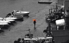Il quadro (stendol [L.B.W.L.]) Tags: umbrella board quadro ombrello picture paint