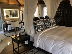 The Ritz Carlton, Ras Al Khaimah, Al Hamra Beach 33 (Travel Dave UK) Tags: theritzcarlton rasalkhaimah alhamrabeach