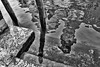 reflections of San Trovaso (Francis Mansell) Tags: post mooring mooringpost reflection steps seaweed santrovaso venezia venice water quay monochrome blackwhite canal niksilverefexpro2 riodesantrovaso ripple ripples