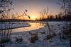 Waiting for summer (Traylor Photography) Tags: alaska sunset reflection westcesterlagoon swans snow anchorage melt mallards light unitedstates us