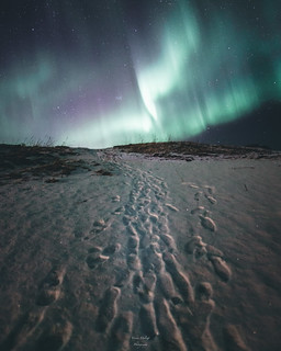 Lead me to the Northern Lights