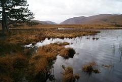 DSC02631 (margaret.metzler) Tags: ireland nationalpark glenveaghnationalpark 2017 autumn countydonegal donegal glenveagh lough loughbeagh lake favorite morning