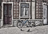 Number 19 (Chizuka2010) Tags: desaturated bicycle curtains urbanexploration city bicyclette azulejos portugal travel travelphotography door woodendoor ornate patterns motifs geometricmotifs cobblestone street pigeons chizuka2010 luciegagnon olympusem10mkii olympusm1240mmf28
