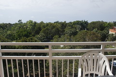 The 1st Balcony View (blackunigryphon) Tags: westonflorida florida southernflorida vacationvillage bonaventure balcony gypset gypsetter bohemian boho chic vacation