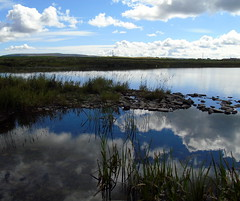 Reflections (stuartcroy) Tags: orkney island reflection clouds water weather white waves beautiful blue bay
