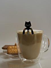 2018 Sydney: Flickr Friday - 100% (dominotic) Tags: 2018 food drink coffee biscuit 100percent flickrfriday 100 silvercatspoon flatwhite chocolatescotchfingerbiscuits sydney australia