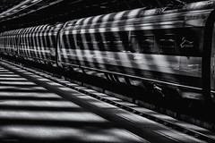Lines Of Light (sdupimages) Tags: noirblanc blackwhite train shadow ombres tgv eurostar e320 london londres plateform station quai bw nb