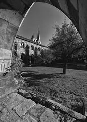 Halberstadt Kreuzgang Dom (Sciurus vulgaris) Tags: halberstadt harz harzvorland kirche dom gotik romanik sakrales