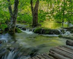 Movement (J-B Kucharski) Tags: croatia europe forest green leaves longexposure nationalpark plitvicelakes tonal water wood reflect metallic wind 500px
