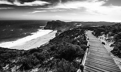 SouthAfrica_capehope_2