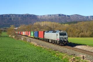 La 333.309 (ahora es de Low Cost) a cargo de un TECO Valencia-Bilbao.