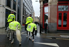 Horse Polices (Toni Kaarttinen) Tags: uk unitedkingdom gb greatbritain britain london england المملكة المتحدة regneunite vereinigteskönigreich britio reinounido isobritannia royaumeuni egyesültkirályság regnounito イギリス verenigdkoninkrijk wielkabrytania regatulunit storbritannien anglaterra tinglaterra englanti angleerre inghilterra イングランド engeland anglia inglaterra англия londres lontoo londra ロンドン londen londyn лондон police horse policehorse stpaul cathedral church