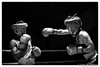 Boxing (Joao de Barros) Tags: barros joão sport boxing action monochrome