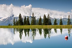 Mountain Lake and Firs with Reflection (aivar.mikko) Tags: mountain lake firs reflection western austria zellamsee zell am see alps tyrol trek mountains outdoors trekking hiking hike austrianlandscapes austrian landscapes landscape scenic view schmittenhöhe