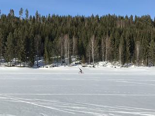 Man biking on ice- and snow covered lake in an old snowmobile trail