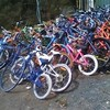 The bike shed (fairyduff) Tags: recycle discarded left bicycle unwanted dump rubbish