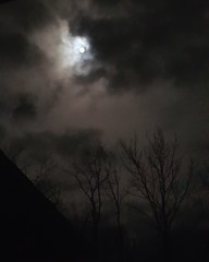 goodfriday2018 (1SolarDay1) Tags: goodfriday 2018 moon nighttime nightmoon lunar passover bluemoon clouds nightclouds moonlitclouds moonlight dark eerie spooky silent goth