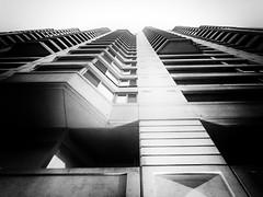 Ottawa, Ontario, Canada (duaneschermerhorn) Tags: architecture building skyscraper structure highrise architect modern contemporary modernarchitecture contemporaryarchitecture black white blackandwhite blackwhite bw noire noir blanc blanco schwartz weiss