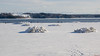 Fleuve Saint-Laurent en hiver, Québec, Canada - 4832 (rivai56) Tags: villedequébec québec canada ca fleuve saintlaurent en hiver glace ice winter st lawrence river quebec