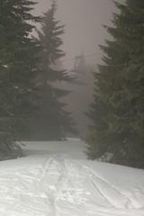 (kattheraccoon) Tags: canon canoneos canoneos1300d art photography snow serbia kopaonik winter white cold ski skiing skies skilift fog night