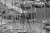 Forçats cachés (ZUHMHA) Tags: marseille france aviron rowing bateau boat personnes people human humain sport sportifs eau water port harbour sea mer line lignes courbes curve geometry géométrie grille grillage fence barrière