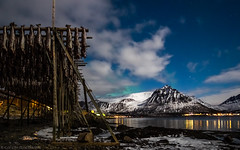 Dried Fish, Mountains, Snow and just a hint of Northern Lights (katrin glaesmann) Tags: lofoten norway 2018 winter nordland unterwegsmiticelandtours photographyholidaywithicelandtours northernlights auroraborealis polarlys nordlys aurorapolaris sea fishrack dryingrack gimsøy gimsøya reflection stars clouds night