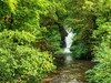 Last cascade of the Dyfi Furnace Waterfalls