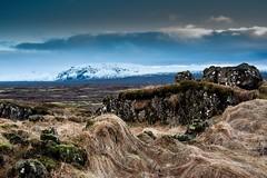 Islande, Thingvellir, 19 (Patrick.Raymond (4M views)) Tags: islande froid gel hiver neige glace cascade cercle dor hdr nikon