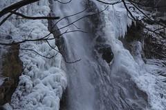 Pissevache (bulbocode909) Tags: valais suisse vernayaz pissevache cascades nature montagnes hiver gel glace eau arbres forêts
