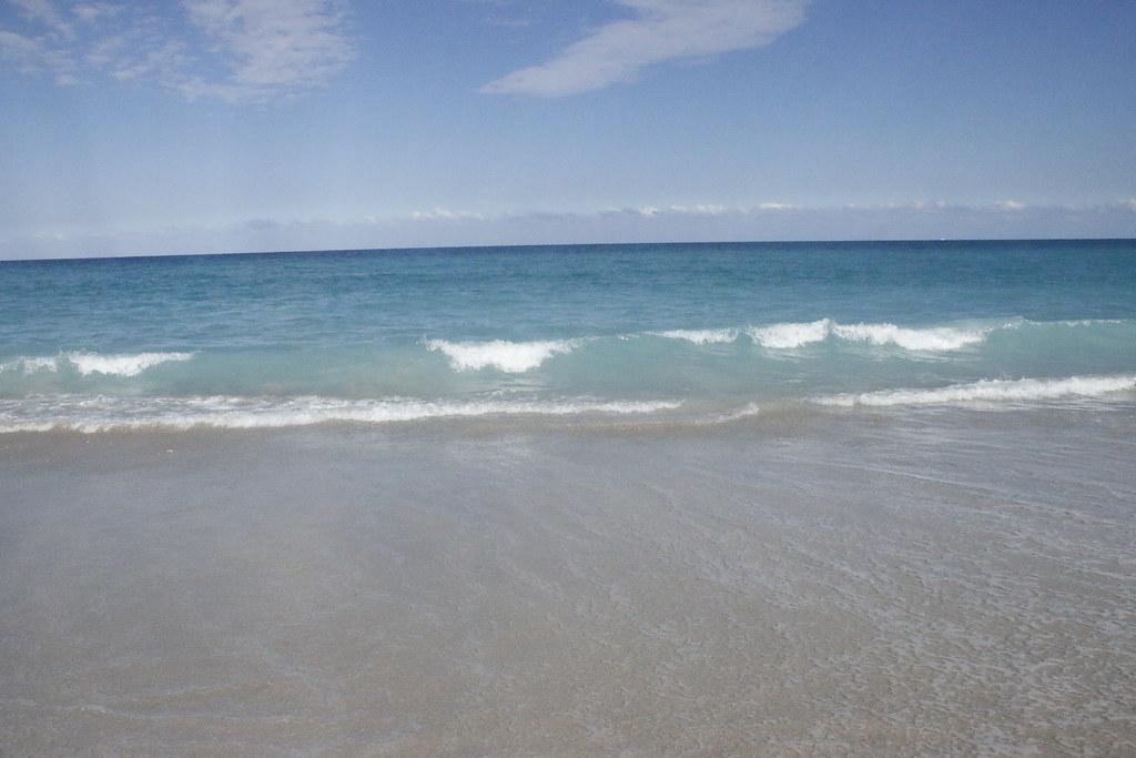 Ocean Bleu Dania Beach