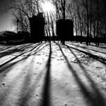 Griffintown park winter shadows thumbnail