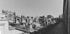 4142 - Cementiri Poble Nou -Pano (Explore) (Oriol Valls) Tags: cementiri poble nou cementiripoblenou poblenou oriol valls oriolvalls barcelona spain catalunya cataluña ciutat city barna bcn ciudad make digital canon eos 6d canoneos6d canon6d photo pic picture capture moment photos pics pictures beautiful exposure composition focus street streetphotography urban architecture building architexture buildings skyscraper design cities urbanandstreet streetframe visualoflife streetselect streetphotographer peoplewatching everybodystreet streetsnap fotogràfic fotografia carrer calle fotografíacallejera fotografía callejera fotografiadecarrer barcelonastreet art arte escultura modernisme català modernismo modernista figura estatua