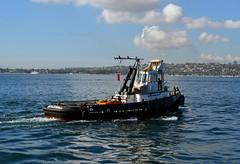 Bronzewing pulling away (PhillMono) Tags: nikon dslr d7100 australia bronzewing tug reflection sydney harbour ship boat vessel