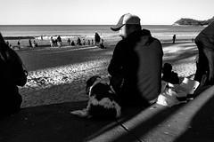 best friends  #779 (lynnb's snaps) Tags: barnack cv21mmf4ltm leicaiiif tmaxdeveloper tmax100 bw beach blackandwhite film people 2017 rangefinder manlybeach sydney australia man dog coast horizon winter companionship bestfriends bianconegro bianconero blackwhite biancoenero blancoynegro noiretblanc schwarzweis monochrome leicafilmphotography ishootfilm