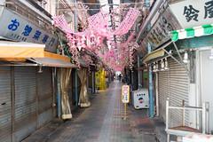 2017-03_D_056 (sshusaku) Tags: tokyo street shitamachi